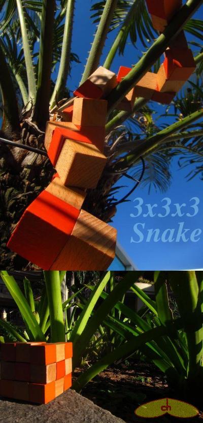 3x3x3snake